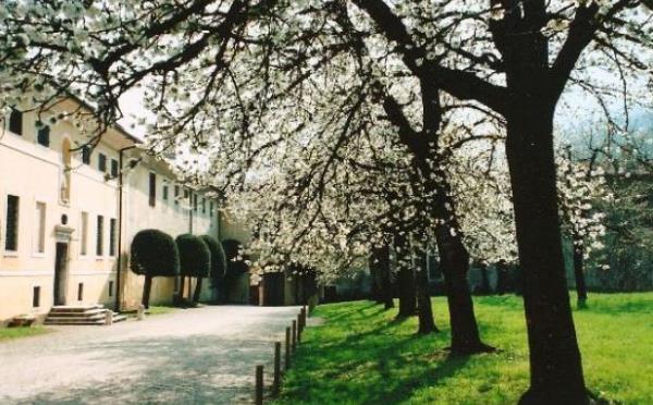 Dimora-storica-Palazzo-Lodron-Nogaredo-esterno