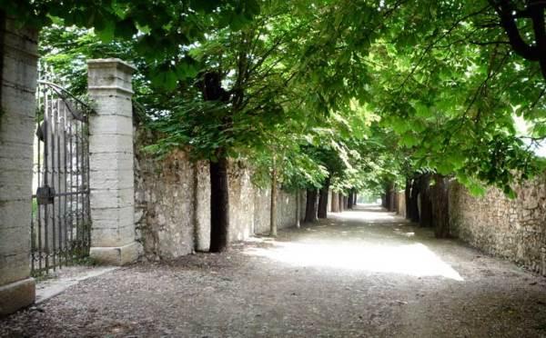 Dimora-storica-Palazzo-Lodron-Nogaredo-viale