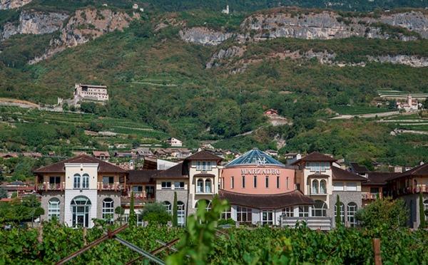 Distilleria-Marzadro-Vallagarina-vigneto